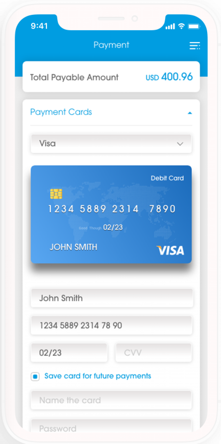 Voyage payment via global and local card schemes